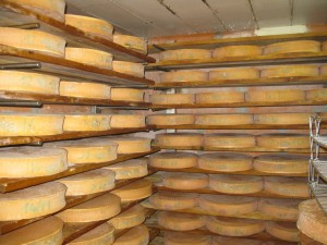 Caro comes from the land of cheese.  Fromage d'Abondance in the ageing cellar