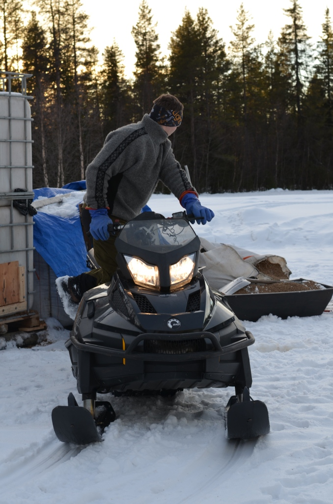 A snowmobile (called a snowscooter in Swedish) is an extremely useful tool.  Here the snowmobile is being used to bring food to the reindeer during this particularly hard winter.